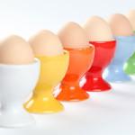 Hängt die Farbe der Schale von Eiern von der Farbe des Gefieders des Huhns ab?